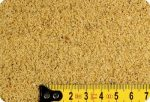 Strandröplabda-homok (kvarchomok) 0,1-1 mm 1000 kg-os kiszerelés